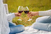 Clinking glases with wine on a picnic — Stock Photo