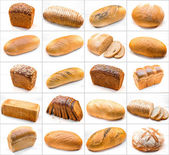 Collage of different photos with breads isolated on white backgr — Stock Photo