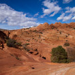 Stock Photo: Coyote buttes canyon