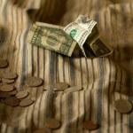 Dollar Money — Stock Photo #33394651