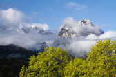 Germany Alpen — Stock Photo
