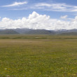 Stock Photo: Grassland panorama