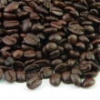 Coffee beans — Stock Photo #40972937
