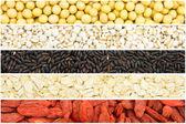 Grain collection — Stock Photo
