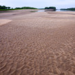 Vast sands on river coast — Stock Photo