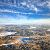 Aerial view of winter forest during frosty day. — Stockfoto