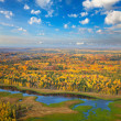 Top view over forest in autumn — Stock fotografie