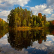 Island on the forest lake in autumn — Stock Photo