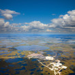 Top view of the oil field, — Stock Photo