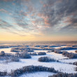 Top view of winter forest at frosty evening — Stock Photo