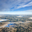 Forest plain in winter — Stock Photo #33521203
