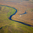 Aerial view river in summer. — Stock Photo