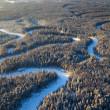 Forest with a small river in a cold winter day — Stock Photo