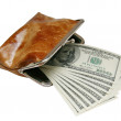 Opened purse with dollars — Stock Photo