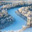 Aerial view of forest river in time of winter day. — Stockfoto
