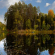 Fisher in boat is on the forest lake in autumn — Stok fotoğraf