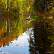 Fisher in boat is on the forest lake in autumn — Stock Photo #33523613