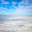 Top view on tundra in winter — Stockfoto