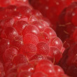 Red raspberry. — Stock Photo #33524563