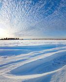Zimní lesní krajiny při západu slunce — Stock fotografie
