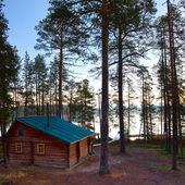 Log house in forest — Stock Photo