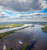 Power lines on flooded forest plains — Stock Photo