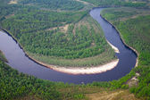 Top view of the forest river — Stock Photo