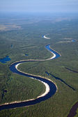 Aerial view on river in forest — Stock Photo
