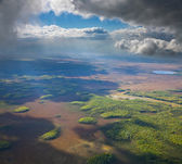 Aerial view of rain cloud over green forest — Stock Photo