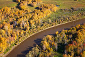 Aerial view of lowland of forest river — Stock Photo