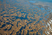 Aerial view of swamps — Stock Photo