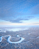 Top view of winter forest river — Stock Photo