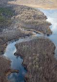Letecký pohled na řeku a Les v předjaří — Stock fotografie