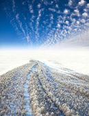 Frosty landscape, the top view — Stock Photo