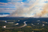 Wildfire beside the forest river — Stock Photo
