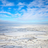 Top view on tundra in winter — Stock Photo
