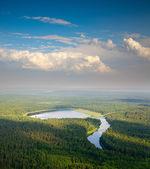 Letecký pohled na lesní jezero — Stock fotografie