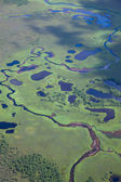 Aerial view flooded forest plains. — Stock Photo