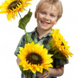 Happy boy with sunflowers — Stock Photo
