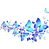 Background of blue butterflies — Stock Vector
