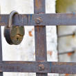 Rusty lock on a lattice — Stock Photo