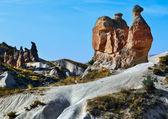 Rocks in form figures of camel and fur-seals — ストック写真