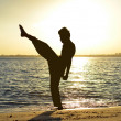 Silhouette of young boy performing pencak silat, Malay traditional discipline martial art in evening at beach — Stock Photo #37806901