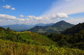 Morning view from hillside of Genting Highland, Pahang, Malaysia — Stock Photo