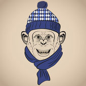 Hand Drawn Vector Illustration of Funny Monkey  in Knitted Scarf and Hat. Hipster vintage style — Stock Vector