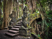Dragon Bridge at the Monkey Forest Sanctuary in Ubud, Bali — Stock Photo
