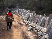Sherpa Porter Walking on Trail Next to Tibetan Mani Stones — Stock Photo