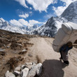 Stock Photo: SherpPorter on Everest Base Camp Trek, Nepal