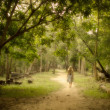 Young Woman Walking on Mysterious Path into Enchanted Forest — Stock Photo #38572393