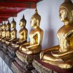 Row of Buddha Statues at Wat Pho temple, Bangkok, Thailand — Stock Photo #39848845
